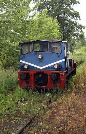 Unknown at Lubljana Depot on 20th June 2010 (2)