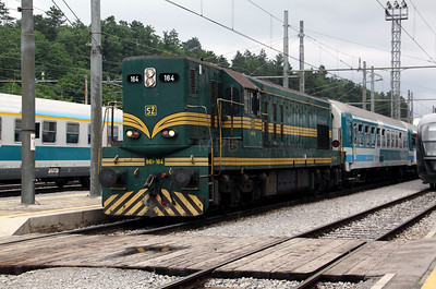 661 164 at Pivka on 20th June 2010 (2)