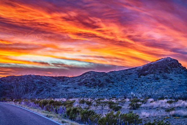 Sunset in Big Bend with Blue Bonnets