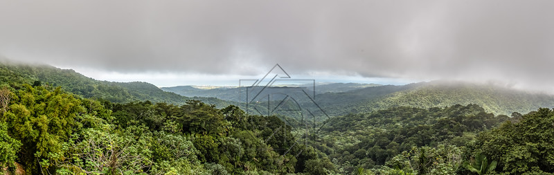 Panoramic view of the El Yunque rainforest