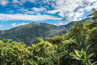 Vista of the El Yunque rainforest with tropical vegetation and mountains