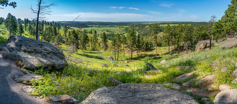 Devil's Tower_6687-Pano