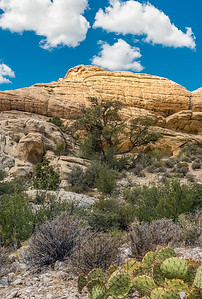 Large yellow sandstone rock formation with desert scene