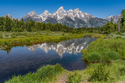 Schwabacher landing with river in the foreground and grand tetons in background mid summer blue sky
