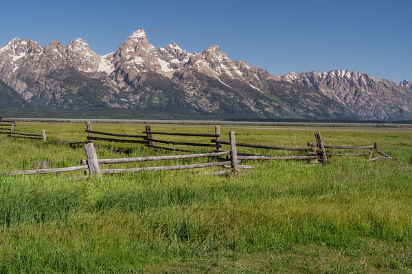Fence at the end of Mormon Row