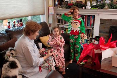 2015 Family Christmas_001
