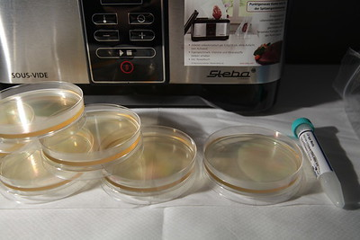 Agar plates (petri dish)