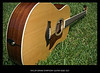 "Taylor GS-8-  This is a custom short scale guitar (24.9"" as opposed to the usual 25 ½ regular scale).  This guitar had a special bone saddle (part of the bridge) and nut (near the headstock) installed for added tone and projection.  The GS body shape is close to a jumbo sized guitar having a deeper voice and a great thump to the bass strings which lends itself to all styles, strumming, Bluegrass fast picking and my style fingerpicking Country Blues.  The shorter scale makes the strings slightly looser and with less tension you get a deeper more mellow sound and thae ability to bend strings and have a more natural vibrato.  The guitar has a Sitka spruce top which is great for all around styles and doesn't take as many years as some other tone woods to ""open up"" and really start to produce great tone.  The back and sides are made from East Indian Rosewood that all woods are solid on this instrument.  The bracing under the top is scalloped so it can vibrate more freely.   The gold plated tuning keys have ebony buttons to be more aesthetically pleasing."