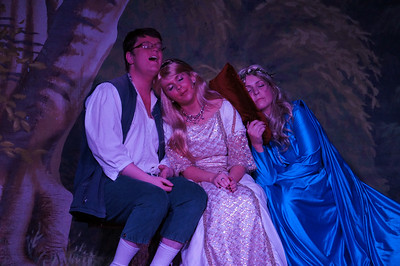 "Togher Theatre Group - ""Happy Ever After"" Pantomine 2013"