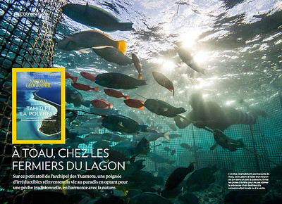NATIONAL GEOGRAPHIC FRANCE - 10 PAGES - AVRIL 2017
