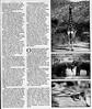 Safari  Mainichi Daily News  Tokyo, Japan  Nov 10, 2000  2of3