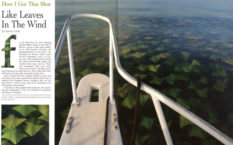 Boat USA magazine, USA
