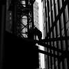 NYC - GETS BUILT A LITTLE TALLER EACH DAY