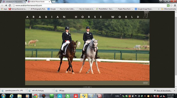 Arabian Horse World 2015