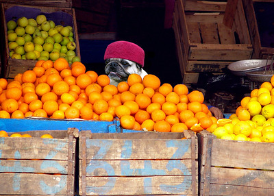 CITRUS SELLER - SOUSS, TUNISIA