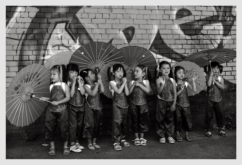 Chinese New Year Celebration.  Wellington 2014