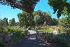 Park's community garden