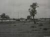 1967 Fitzroy School