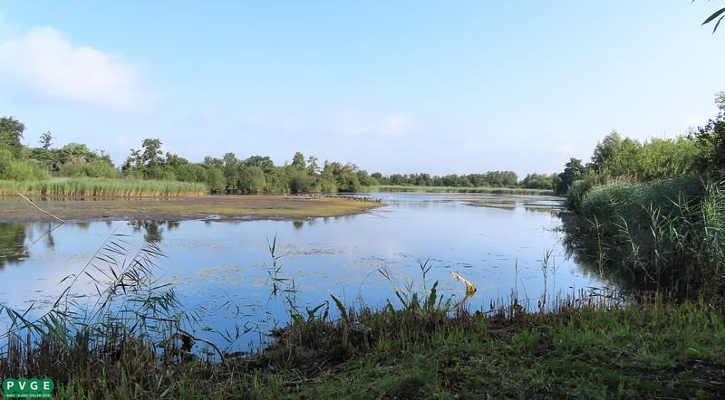 2019-0813-pvge-wandelen-05
