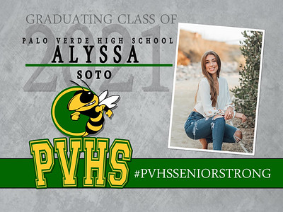 PVHS   YARD SIGN 5