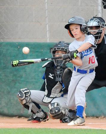 int_SSLL Dodgers^RHLL Dodgers TOC 2019_9450