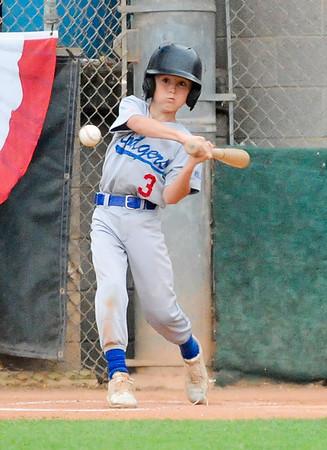 int_SSLL Dodgers^RHLL Dodgers TOC 2019_9428
