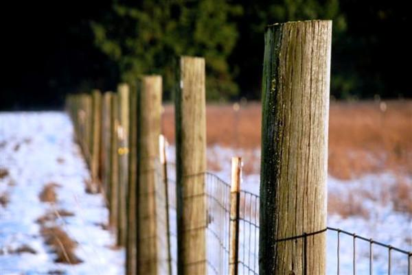 Fence%20Post-M.jpg