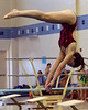Bob Raines--Digital First Media //Amber McElrath (Hatboro-Horsham) competes in the PIAA District One Girls Diving Championship Feb. 25, 2017