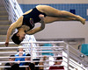 Bob Raines--Digital First Media  //  Shannon Reape (Upper Dublin) competes in the PIAA District One Girls Diving Championship Feb. 25, 2017.