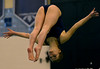 Bob Raines--Digital First Media  //<br /> Madalyn Freece ( North Penn) competes at the PIAA District One Girls Diving Championship Feb. 25, 2017.