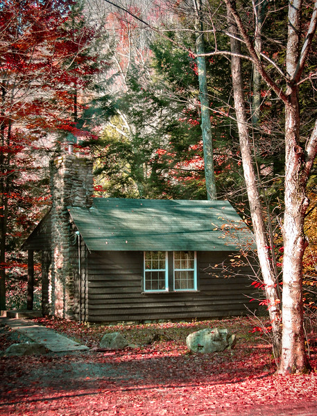 Cabin at World's End State Park