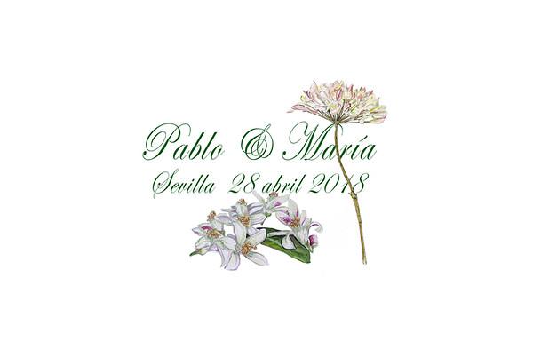Pablo & María - 28 abril 2018