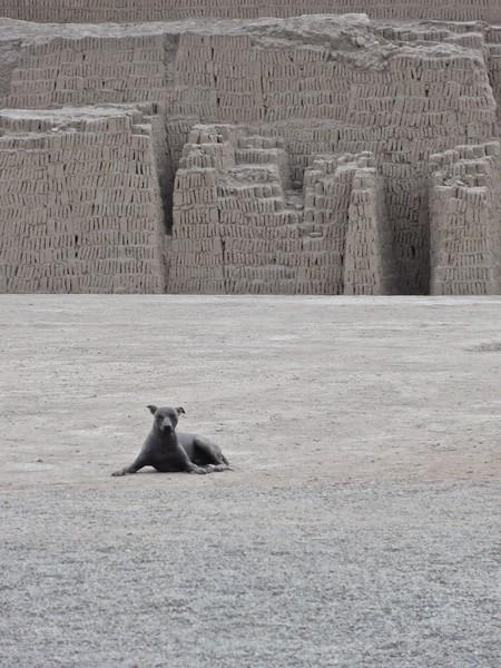 Huaca Pucllana, Lima.