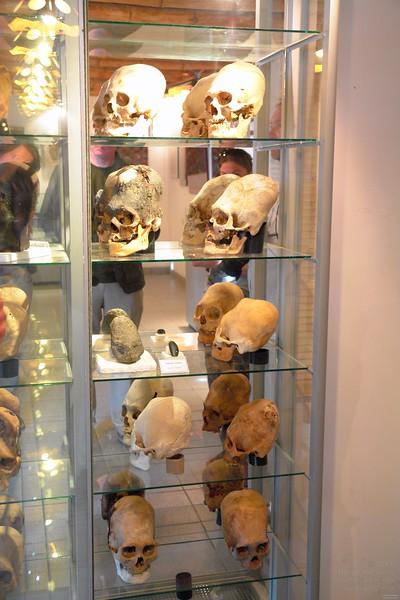 Paracas History Museum.