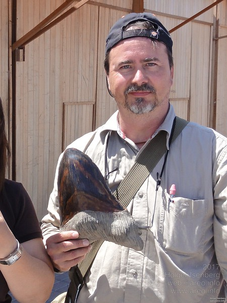 A fossile giant shark tooth from the Megalodon species. Sells for $150 in the village Paracas. Though tooth like this are found in that area, this one was suspicious heavy. It wasn't bought as generally the problem is, you are not allowed to export fossils and ancient cultural objects from Peru!
