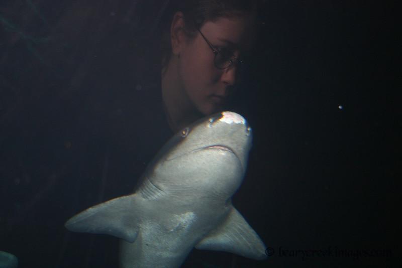 Freaky Reflection - Oregon Coast Aquarium, Newport, Oregon