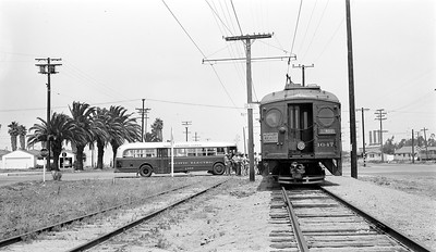 The Seal Beach Connection