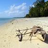 The beach where we stayed on Aitutaki.