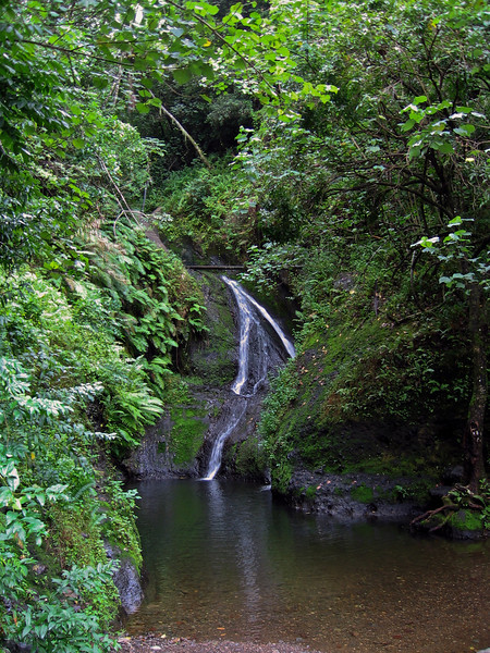 Rarotonga's only waterfall and the area the islands water supply comes from. We drove up here on the Island tour.