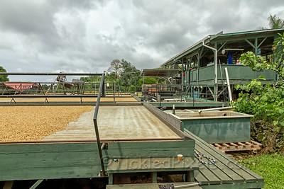 Old Style 'Hoshidanas' Coffee Drying Platform