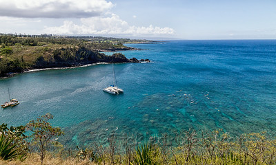 Snorkeller's Paradise
