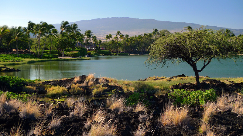 Another view of Ku'uali'i Fishpond with one of Hawaii's 2 largest volcanoes Mauna Loa in the background. Mauna Loa is 13,678' high which makes it higher than Mt. Cook. It doesn't look it