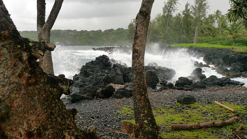 We stopped at Ke'anae Point which had some pretty impressive volcanic rock formations and crashing waves.
