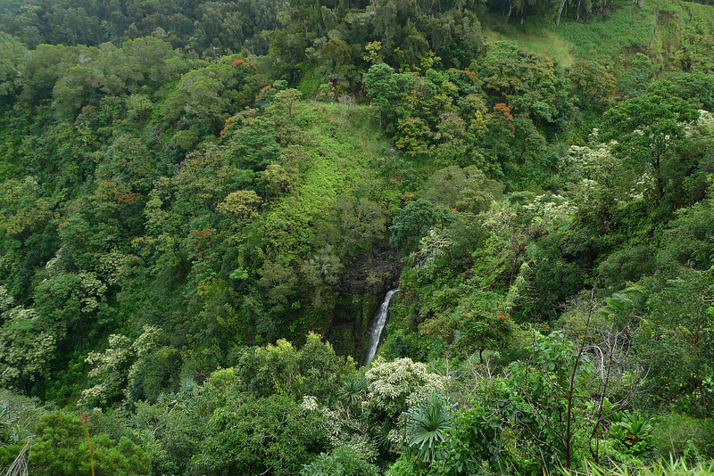 Another waterfall on the Hana Road.