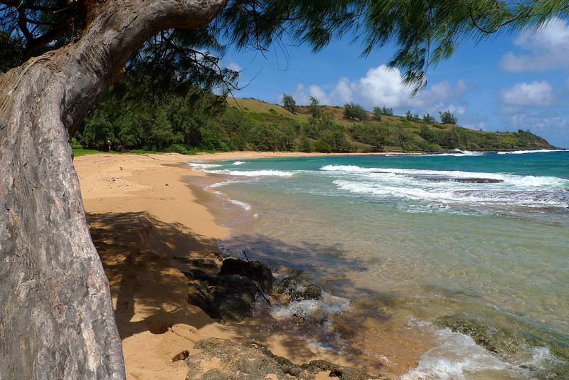 Larsen's Beach at Moloa'a on the east coast of Kauai.