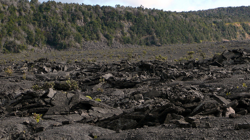 The disrupted lave floor and forested walls of the Kilauea Caldera.