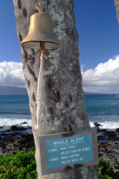 Whale warning bell at the front of our resort at Napili. It was the wrong time of the year to see whales but it was a nice spot to relax with a beer and watch the sunsets.