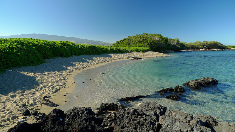 A nice little beach at the southern end of 'A' Bay. We saw turtles in the water round here. Mauna Loa is in the background again.