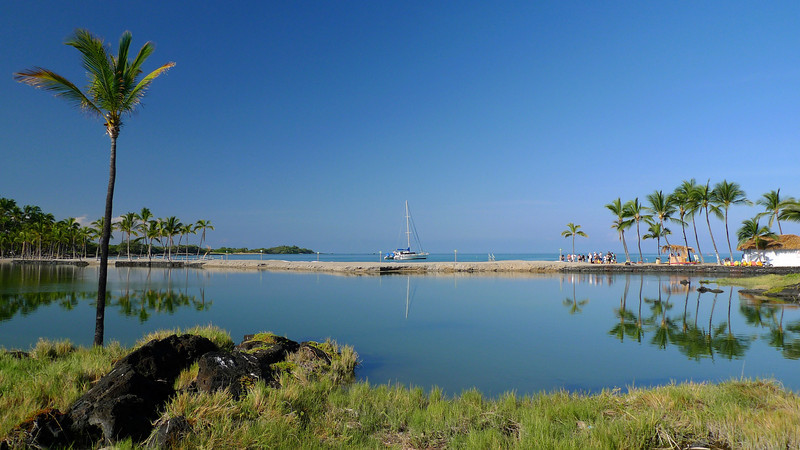 Another view of the fish pond in 'A' Bay in the early morning.