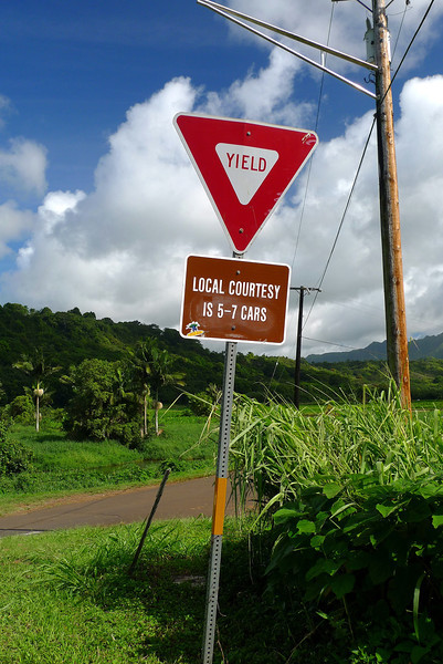 A sign at a one way bridge. No red or black arrows for these guys. They are allowed to use common sense. An uncommon occurance in litigious USA. On our volcano tour on Hawaii (the Big Island) we were told we were not allowed to open the van door ourselves in case we stepped into the path of an oncoming 18 wheeler big mac truck.
